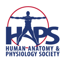Oops.  HAPS logo should be here.  Go to www.hapsweb.org to see it.