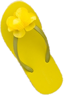 Flipped_yellow_flopMED
