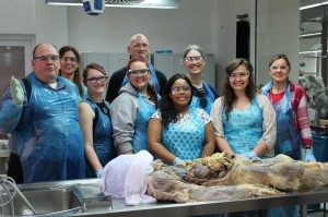 Workshop at the Plastinarium in Guben, Germany.