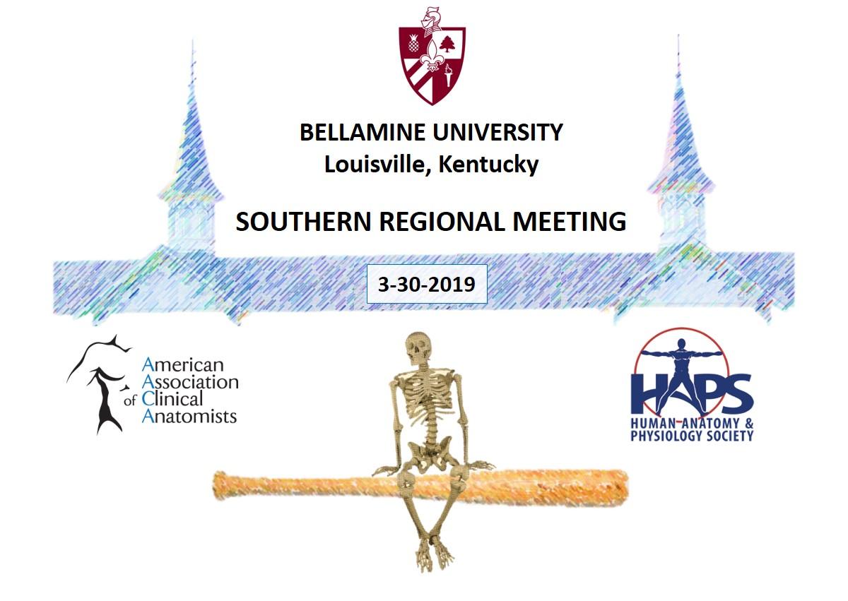 2019 HAPS-AACA Southern Regional Meeting Artwork